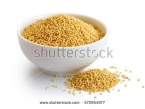 stock photo dry millet in white ceramic bowl isolated on white spilled millet 572954977