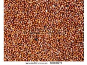 stock photo red quinoa background 186884273