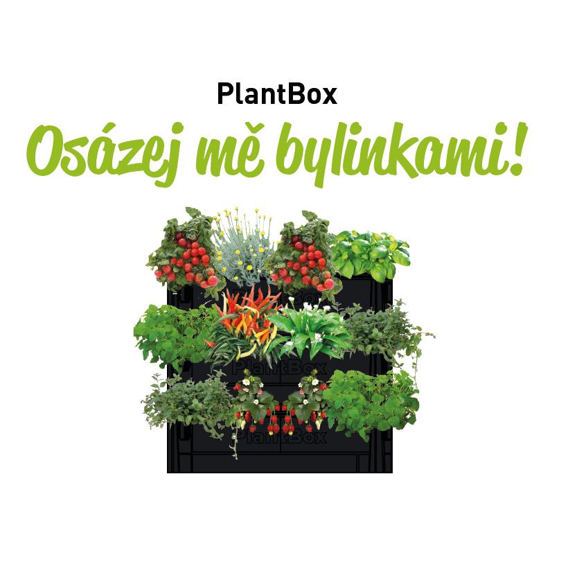 osazovaci_plan_ziva_stena_1