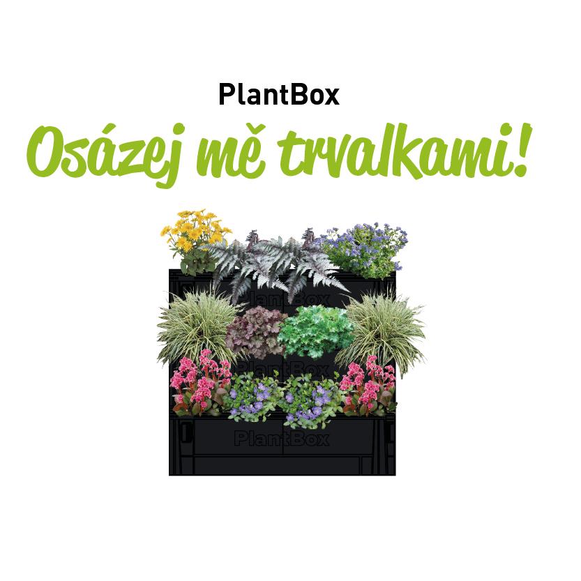 osazovaci_plan_ziva_stena_13