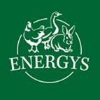 Energys hobby