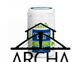 Canvit Chondro Maxi pro psy