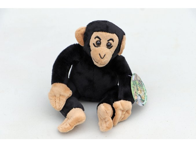 simpanz stredni
