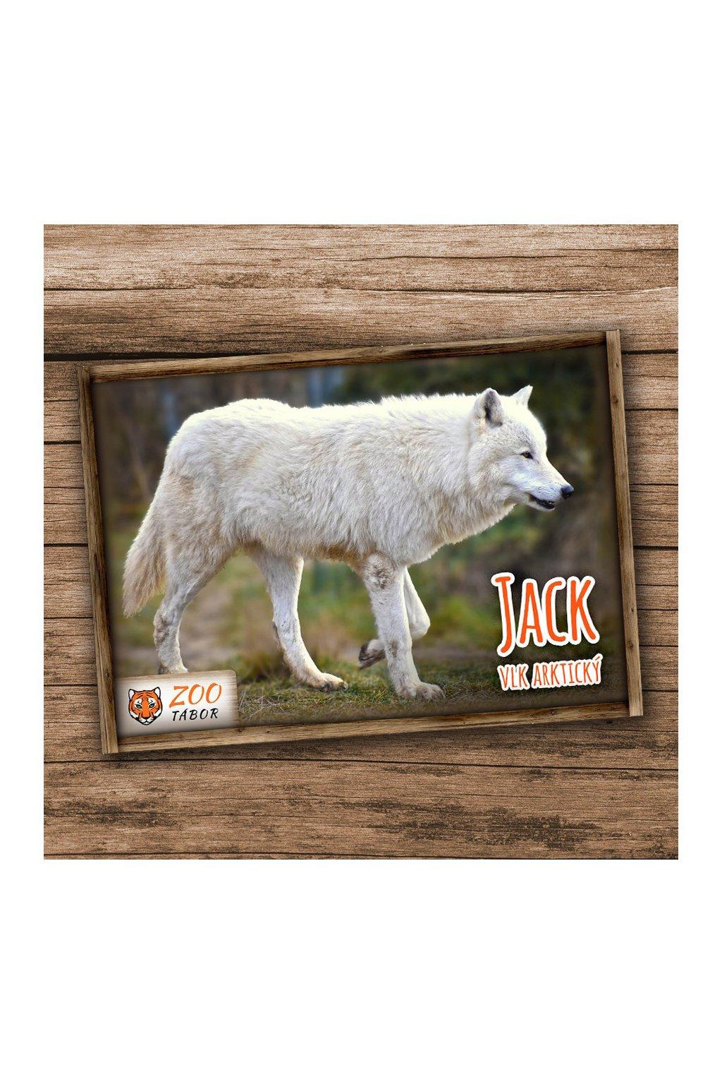 pohlednice n vlk