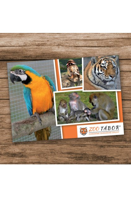 pohlednice ara