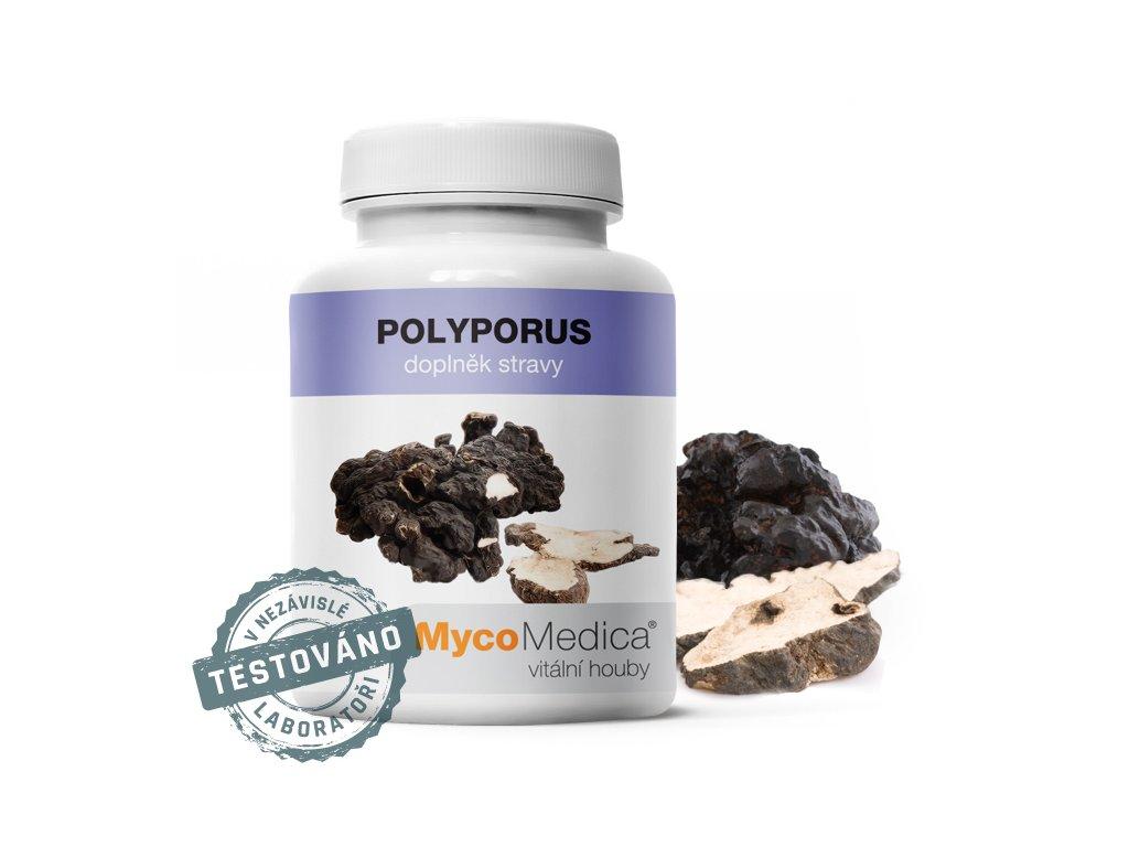 Polyporus 90x500mg MycoMedica