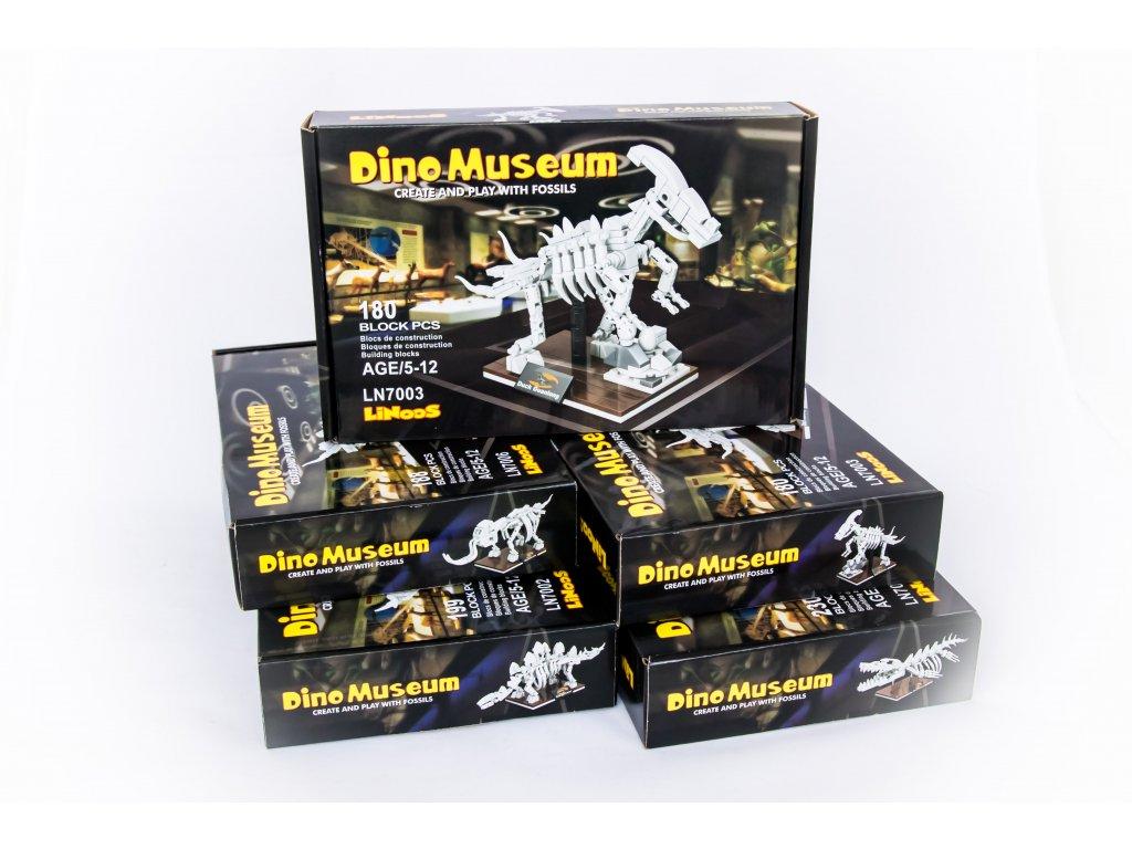 Kostry dinosaurů