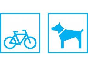 kolo, pes