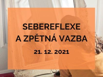 SEBEREFLEXE obrázek na web