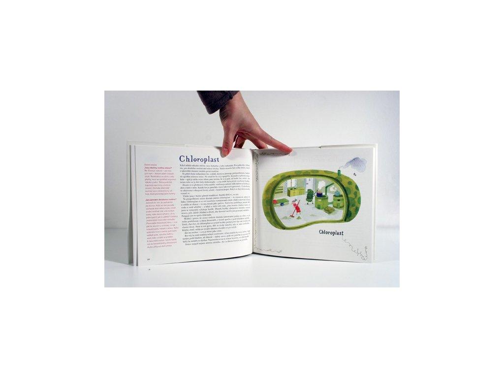 1583 rostlinopis aneb podivuhodne pravdy a vymysly ze zeleneho sveta jiri dvorak