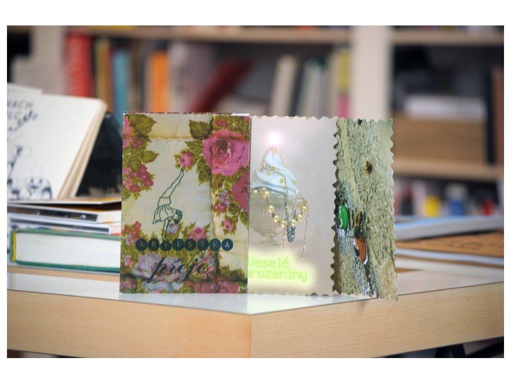3089 soubor pohlednic artistka preje