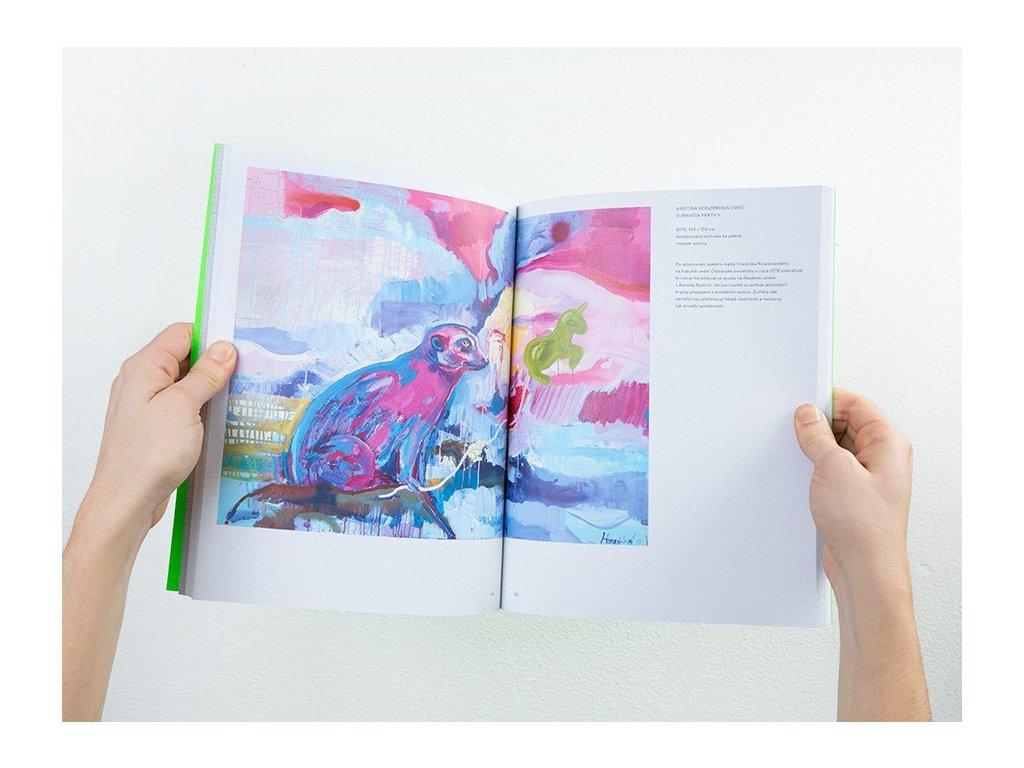 16667 krajinow katalog vystavniho projektu krajinow