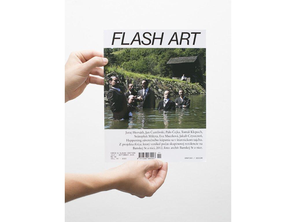 flas art cover