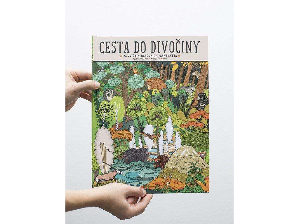 cesta divociny cover