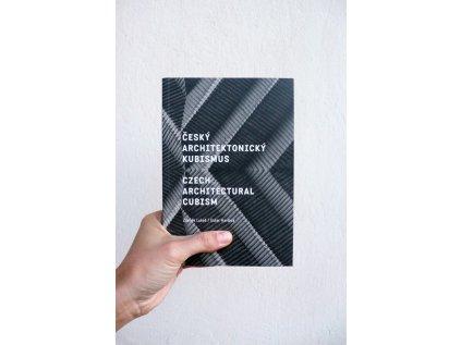 4373 1 cesky architektonicky kubismus czech architectural cubism ester havlova zdenek lukes