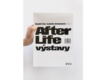 16028 3 after life vystavy david fesl isabela grosseova eds