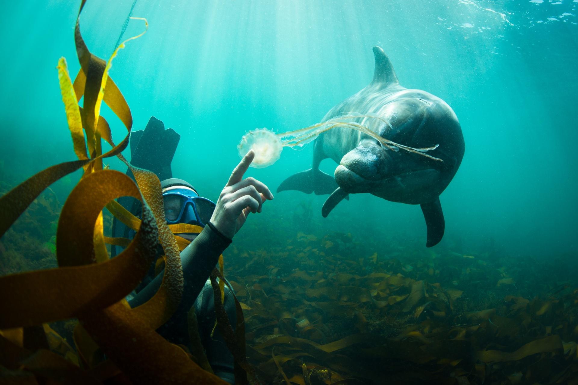 Oceán je můj druhý domov