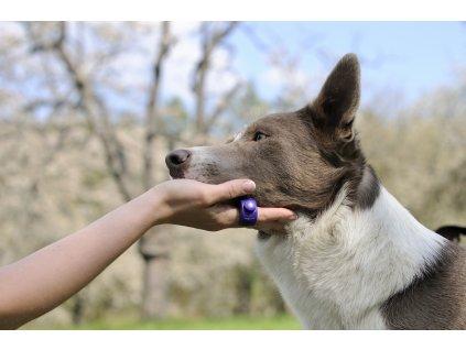 Clicker Ring poppy red