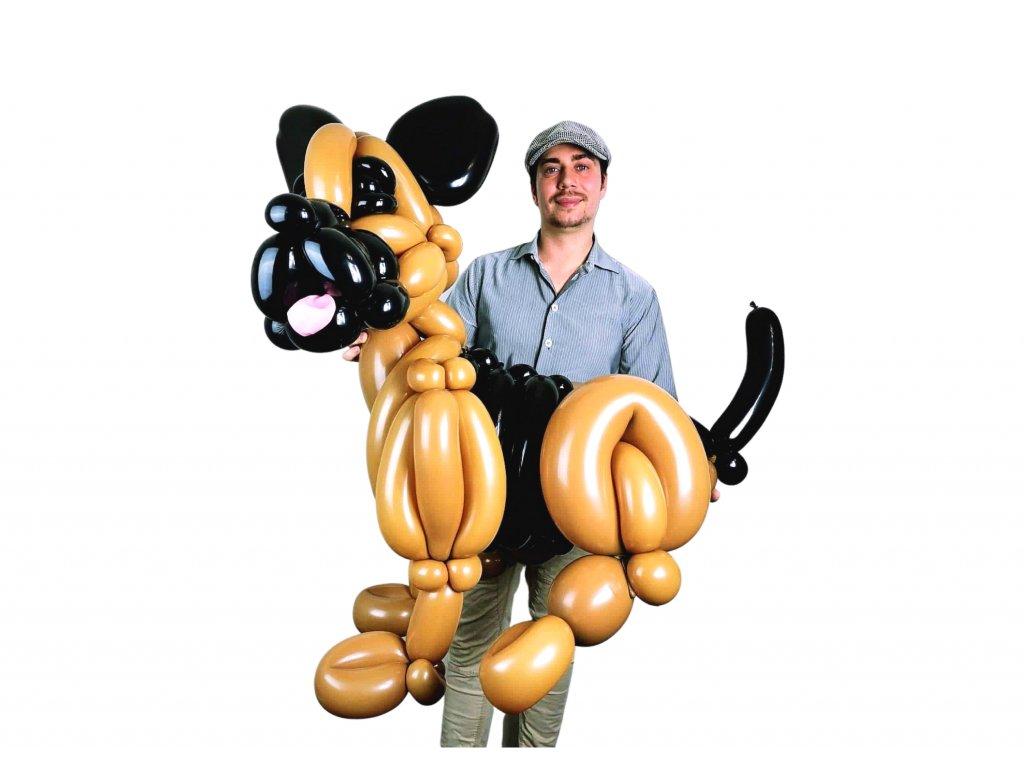 balonkový pejsek z balonku německý ovčák