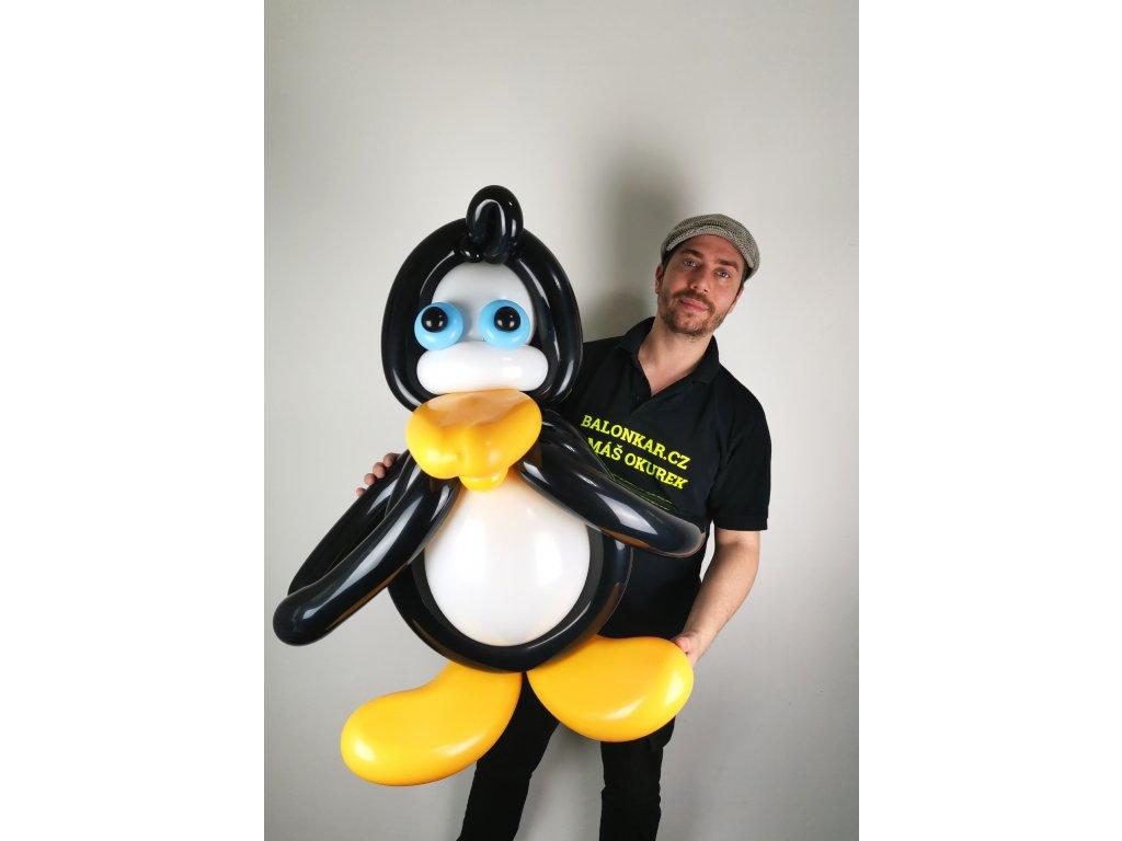 Tučňák z balónků dárek pro děti hračka (2)