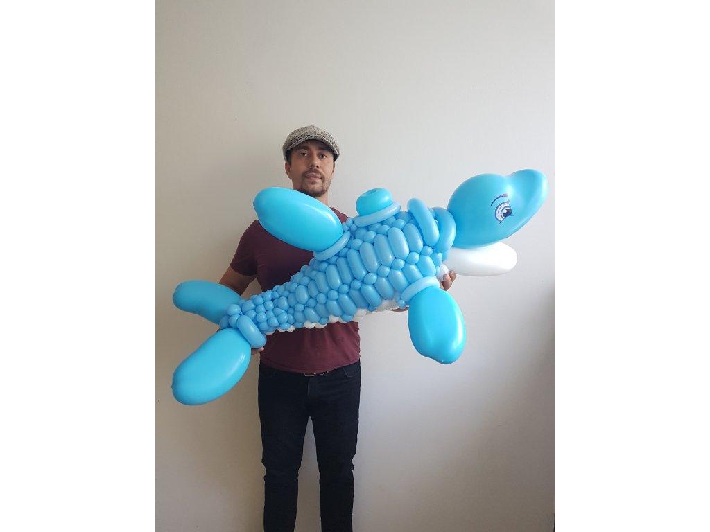 duha balonek balonky z balonků mráček duhová dárek pro děti párty s dětmi děti delfín dolphin delfínek