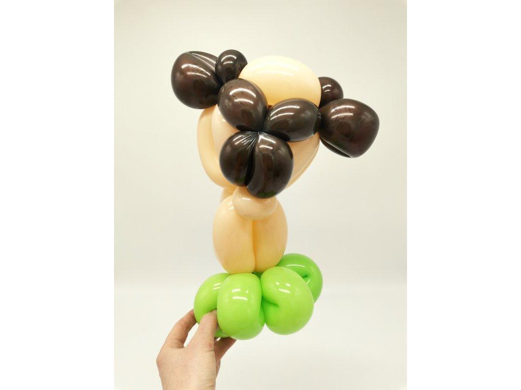 balloon balonek balonků balonky párty narozeninové výzdoba dekorace párty brno praha mopsík mops dog hafan (6)