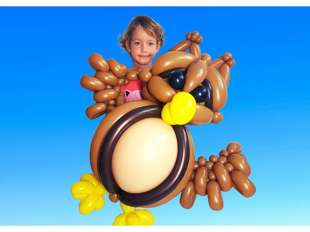 Sova z balónků balónky hračka sovička pro děti