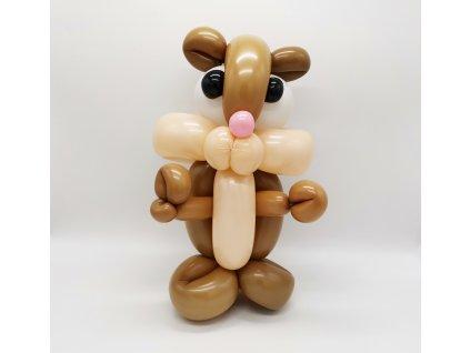 křeček krteček morče morčátko párty z balónků balónky pro děti narozeninové balonky