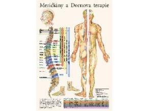 Mapa - Meridiány a Dornova terapie - 32 x 47 cm