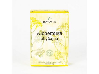 Alchemilka obyčajná