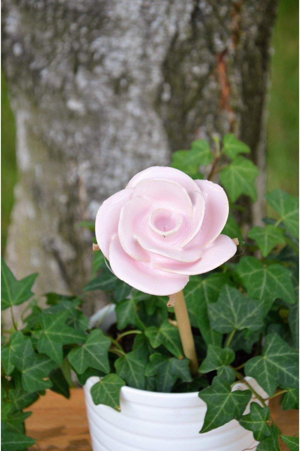 Růže na bambusu - malá