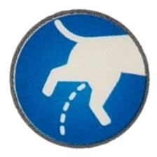 Vadí vám psí moč na fasádě nebo stěně? Spolehlivý postup ve třech krocích.
