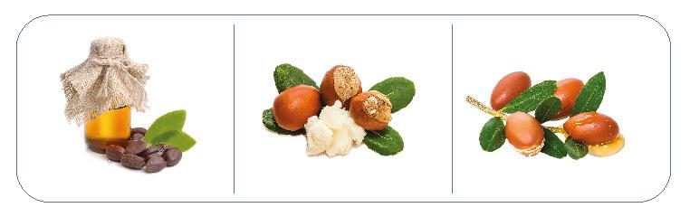 Ingredience šamponu pro psy foolee beauty easy detangling jojobopvý olej, olej z lískových oříšků a arganový olej