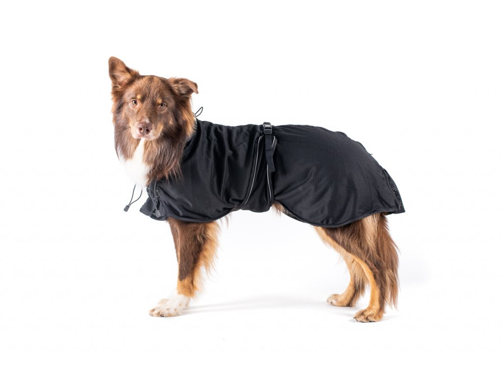 Back on Track - funkční oblečky pro psy