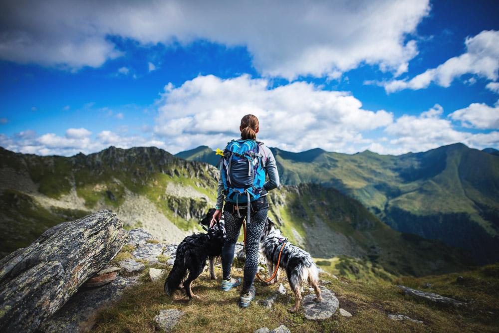 Na hory se psem