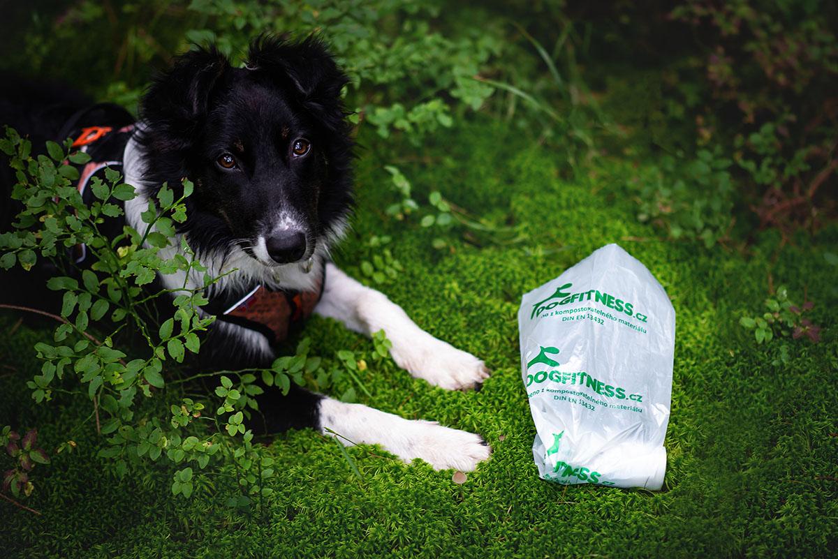 Ekologický pytlík na psí exkrementy