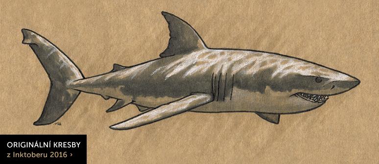 Originální kresby zvířat z Inktoberu 2016