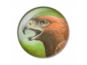 Eagle original