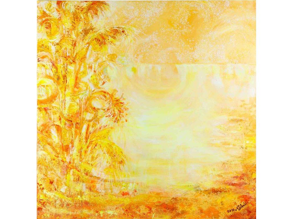 Sluneční zátoka