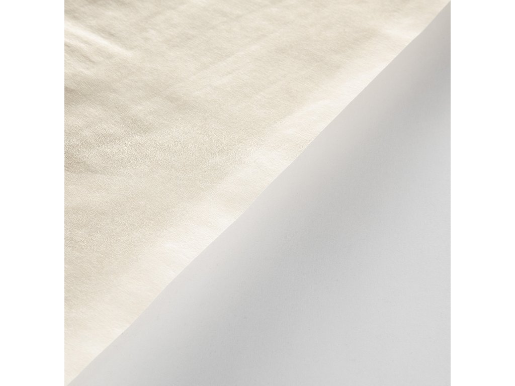 Pergamenová náhrada nebělená, 45 g, 100 x 75, transparentní