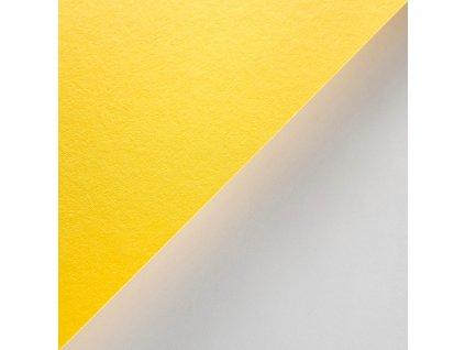 Creative karton, 270 g, B1, recykl, 48 žlutá