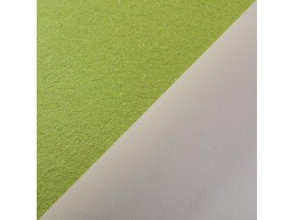 Gmund Bio Cycle, 300 g, Chlorophyll - zelená s trávou