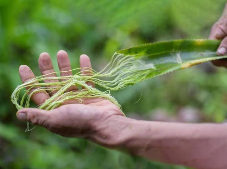 Jaké textilní jsou materiály šetrné pro životní prostředí
