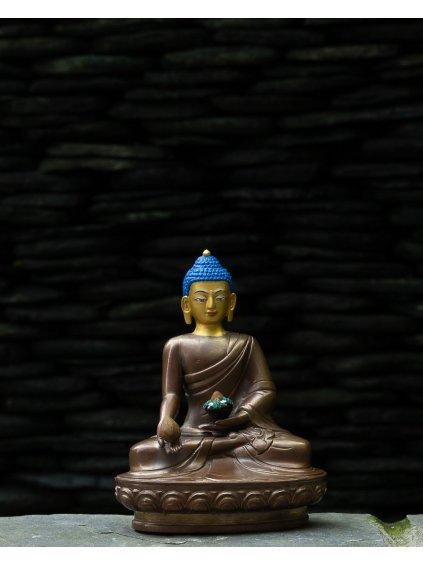 medicinsky buddha 1