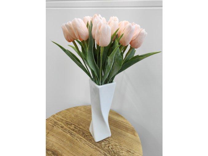Tulipán meruňkový  Tulipán růžový