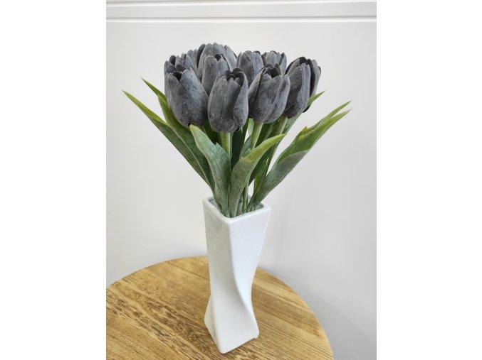 Tulipán černý