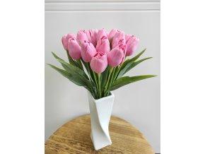 Tulipán baby růžový  Tulipán baby růžový