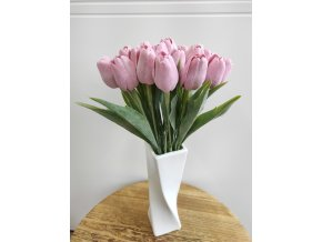 Tulipán mauve tmavý  Tulipán mauve