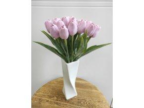 Tulipán mauve světlý