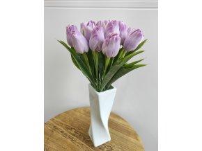 Tulipán fialový melír světlý